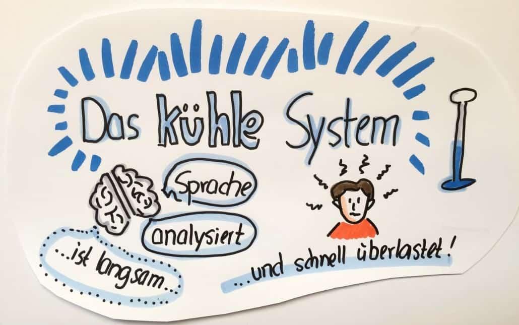 Der Verstand - das kühle und sprachliche System